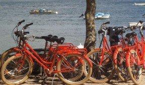 Séjour incentive d'entreprise à Vannes en Bretagne
