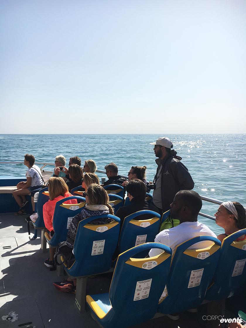 visite des cotes en bateau