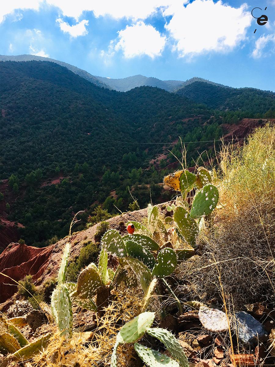 montagne maroc